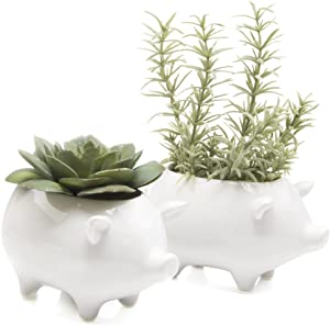 """Chive - Set of 2 Animal Pot Pig Shape Succulent and Cactus Planter Pot, 3"""" Ceramic Air Plant, Flower and Plant Container, Cute Animal Mini Pot for Indoor/Outdoor Garden and Home Decor, Bulk (White)"""