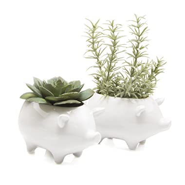 Chive - Set of 2 Animal Pot Pig Shape Succulent and Cactus Planter Pot, 3  Ceramic Air Plant, Flower and Plant Container, Cute Animal Mini Pot for Indoor/Outdoor Garden and Home Decor, Bulk (White)