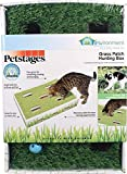 Petstages Grass Patch Hunting and Play Box Cat Ball Toy by
