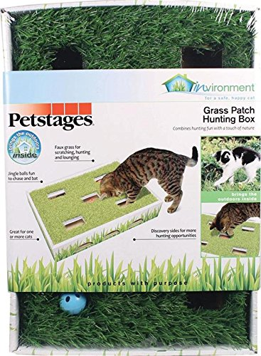 Medium Grass Ball - Grass Patch Hunting and Play Box Cat Ball Toy by Petstages
