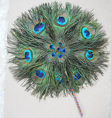 [One of a kind Round Antique peacock feather fan] (One Of A Kind Costumes)