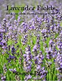 Lavender Fields (Eternal Journey Book 1)
