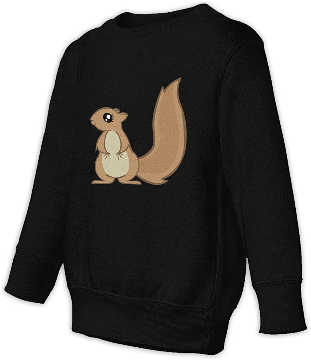 wudici Squirrels Boys Girls Pullover Sweaters Crewneck Sweatshirts Clothes for 2-6 Years Old Children