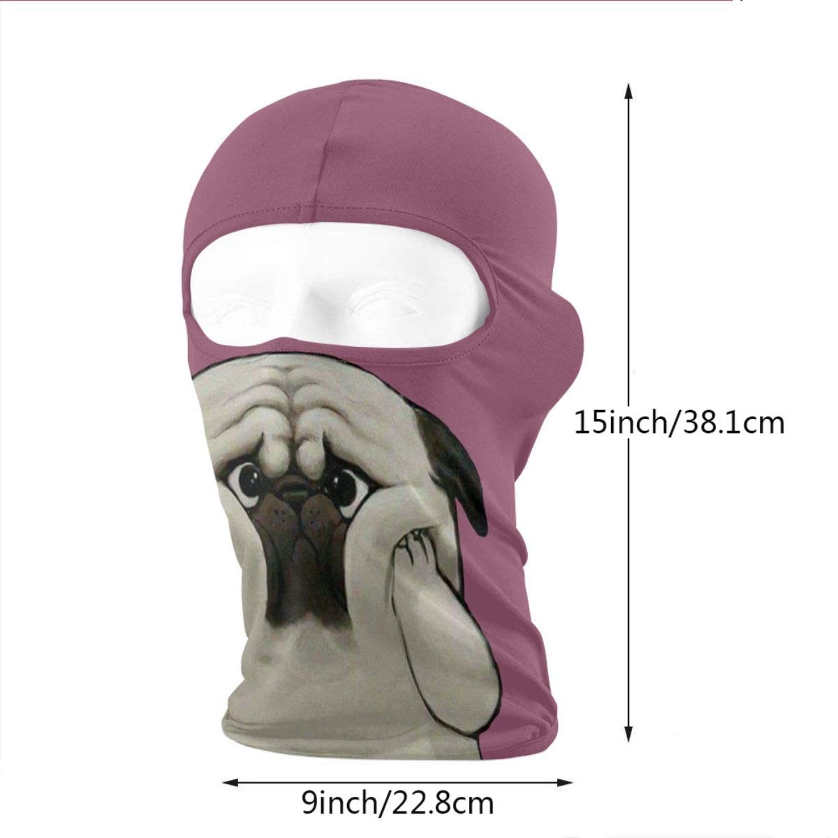 Wind-Resistant Face Mask Lovely Dog Covers Face Winter Ski Mask Balaclava Hood