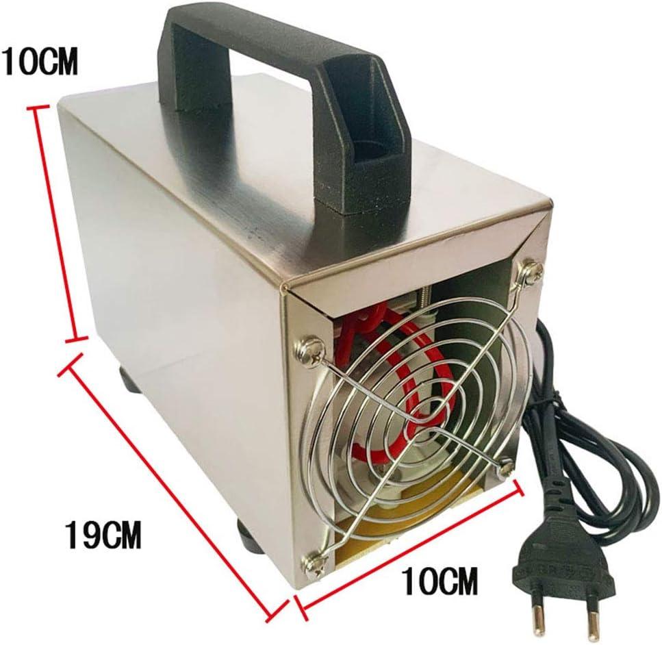et a pass/é la Certification CE FENGT G/én/érateur de lozone lozone 24G Machine Purificateur dair pour d/ésinfecter et st/ériliser Propre Formald/éhyde