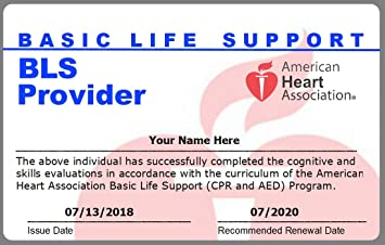 Amazon com: AHA PVC Cards  BLS CPR, ACLS, PALS Card  A
