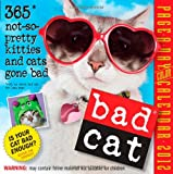 Bad Cat 2012 Page-a-Day Calendar