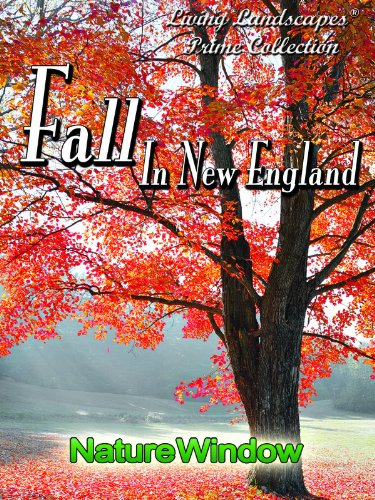 Living Landscapes Fall in New England -