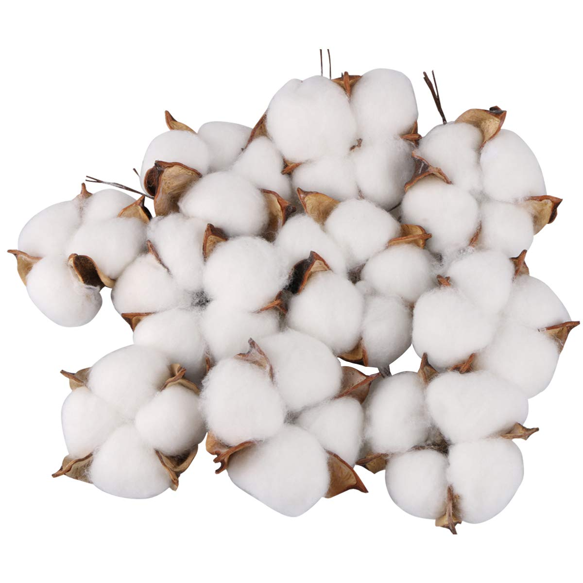 Yoodelife Natural Cotton Bolls Balls Artificial White Cotton Stems Floral Picks for Wreath Home Decor Craft, 10 Pcs