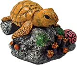 Blue Ribbon Pet Products Sea Turtle by BLUE RIBBON PET PRODUCTS