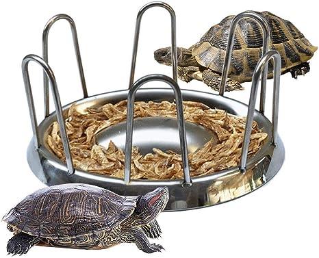 cuenco duradero para reptiles bandeja de agua accesorios de alimentaci/ón dispensador de alimentos para mascotas AZXAZ Alimentador de tortugas de acero inoxidable para alimentos