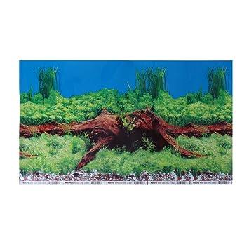 Daxibb Cartel del Acuario de Dabixx Fondo del PVC de Doble Cara 40x30 decoración del Tanque de Peces Plantas del Paisaje: Amazon.es: Hogar