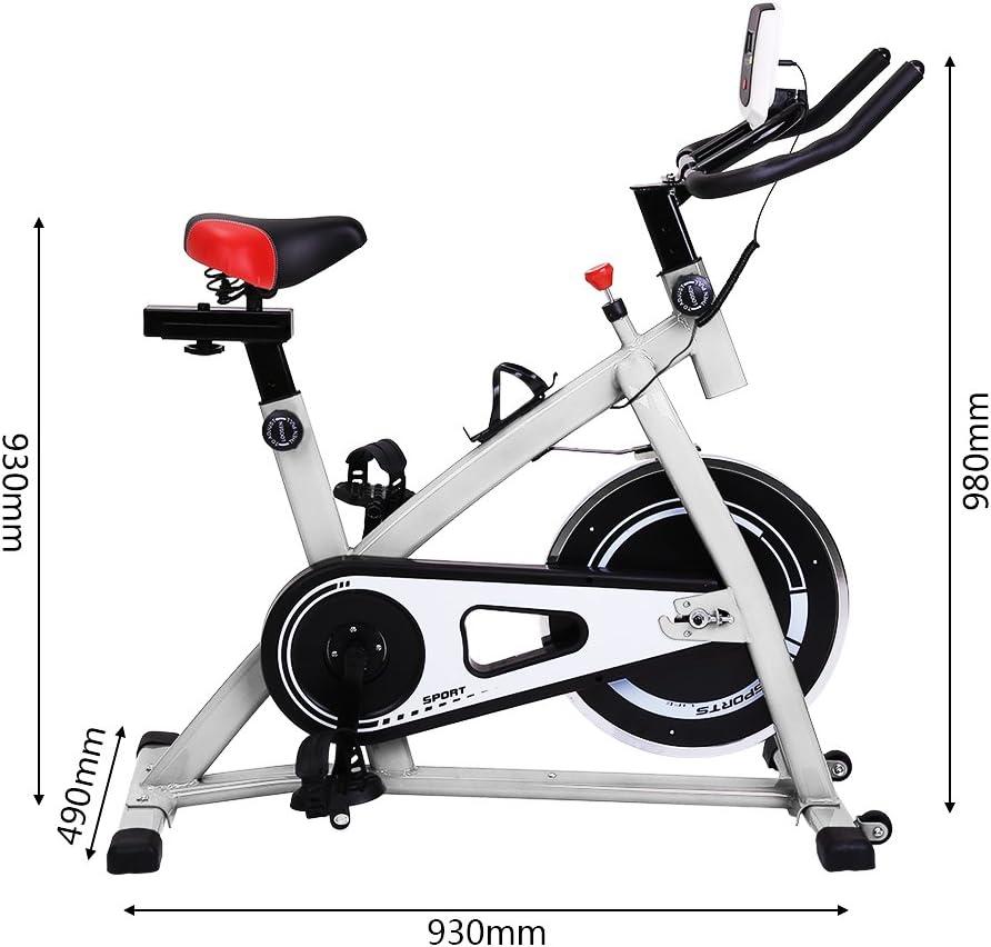 Sweepid - Bicicleta estática profesional para entrenamiento en ...