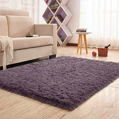 Noahas Super Soft Modern Shag Area Rugs Fluffy Living Room Carpet Comfy Bedroom Home Decorate Floor Kids Playing Mat 4 Feet by 5.3 Feet - 5' Contemporary House