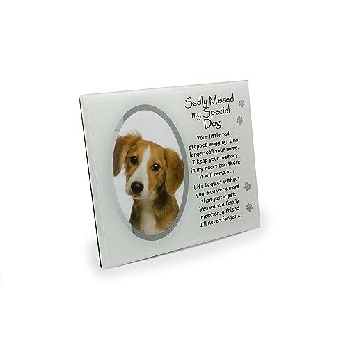 Pet Photo Frames: Amazon.co.uk