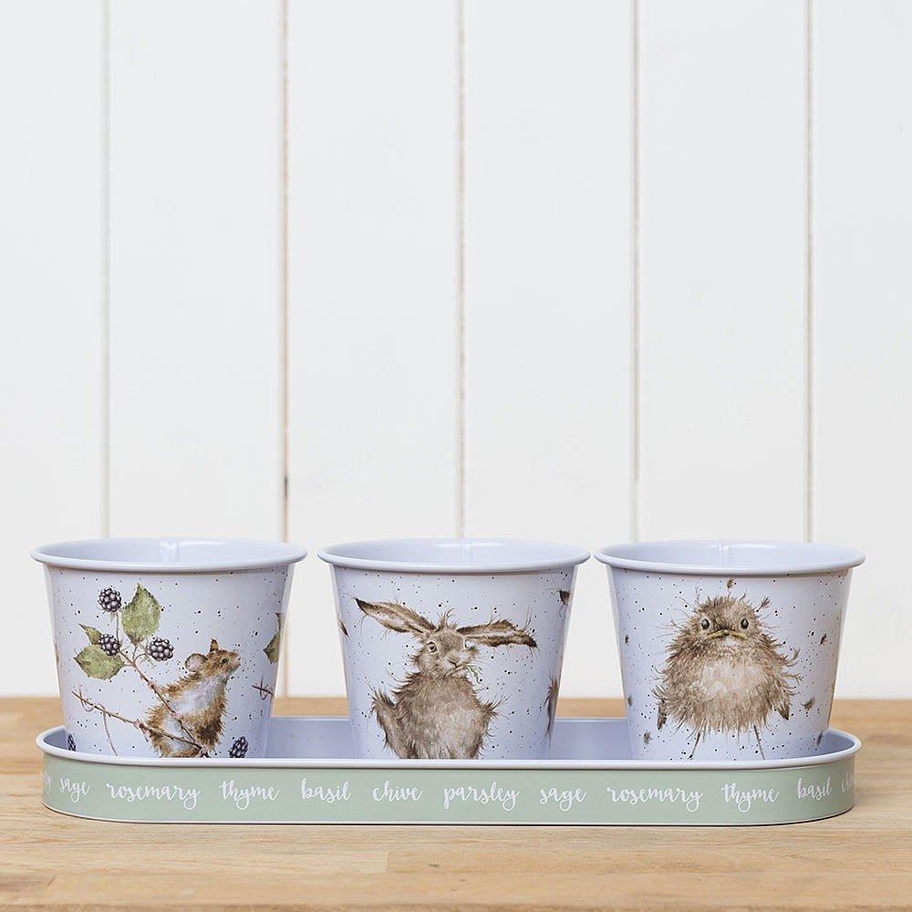 Wrendale Set Of 3 Galvanised Steel Herb Pots & Tray Wrendale Designs