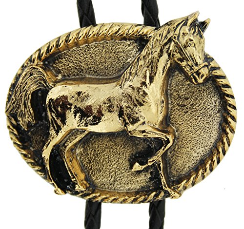 of G Bolo in Tie one Gold Boxes Presentation Horse Plated my URqYCF