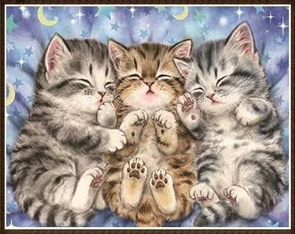 5D DIY Diamond Painting kit Rhinestone Embroidery Cross Stitch Arts for Craft Home Wall Decor,Cute Cat