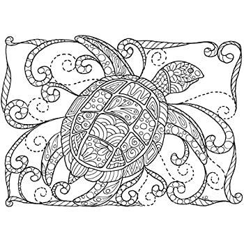 Amazon.com : Adult Coloring Greeting Cards by Colorfest Boxed Set ...