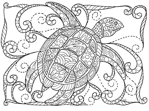 Under the Sea Coloring Greeting Cards for Adults | Birthdays or Thank You Cards | 12 Unique A6 Designs | Envelopes (Adult Greeting Card)