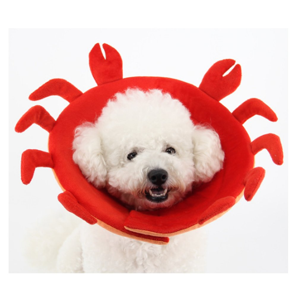 Dog Cone,Pet E-Collar Elizabethan Collars Recovery Pet Cone Breathable Soft Edge for Dogs and Cats(Crab,XL) by Mikayoo (Image #3)