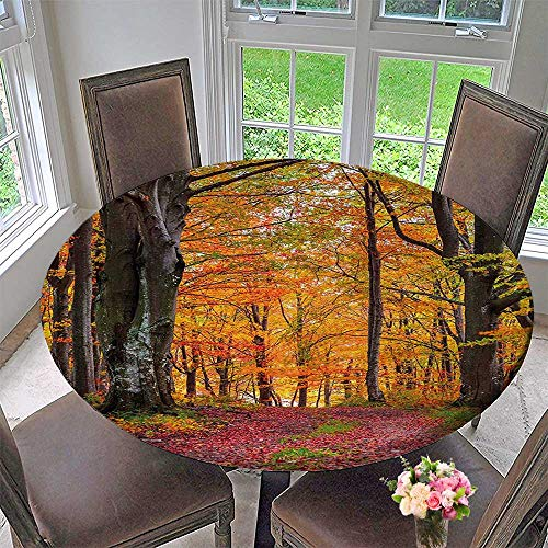 Mikihome Round Table Tablecloth Forest with Shady Deciduous Trees and Faded Leaf Magic Woodland Picture Apricot Brown for Wedding Restaurant Party 43.5