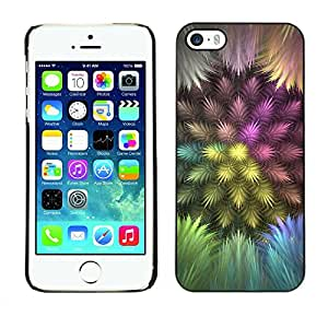 Paccase / SLIM PC / Aliminium Casa Carcasa Funda Case Cover para - Colorful Feathers - Apple Iphone 5 / 5S