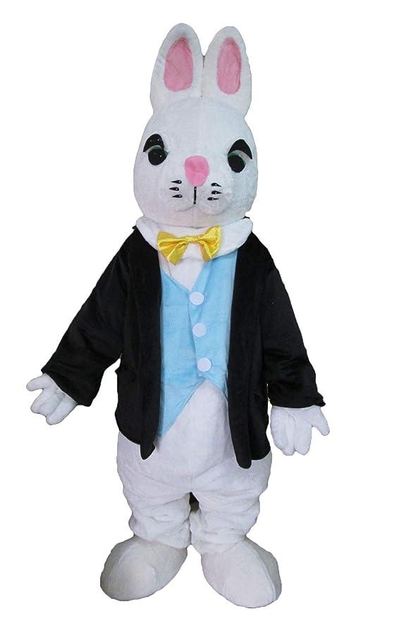 Amazon.com: Disfraz de conejo de Pascua para fiestas ...