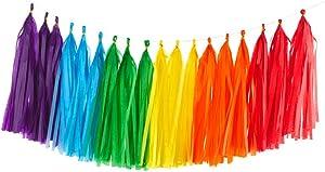 30PCS Shiny Tassel Garland Tissue Paper Tassel Banner,Table Decor,Tassels Party Decor Supplies for Wedding,Birthday,Bridal/Baby Shower,Anniversary,DIY Kits - (Red/Orange/Yellow/Green/Blue/Purple)