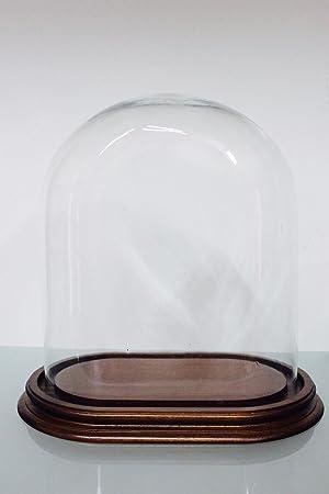 Moderne Glocke Glas-Kuppel Oval H 25: Amazon.de: Küche & Haushalt GF-48