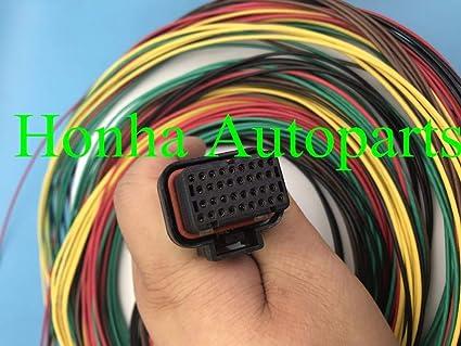 Amazon.com: Davitu wireharness Motec/Haltech ECU 34 PIN DTA ... on