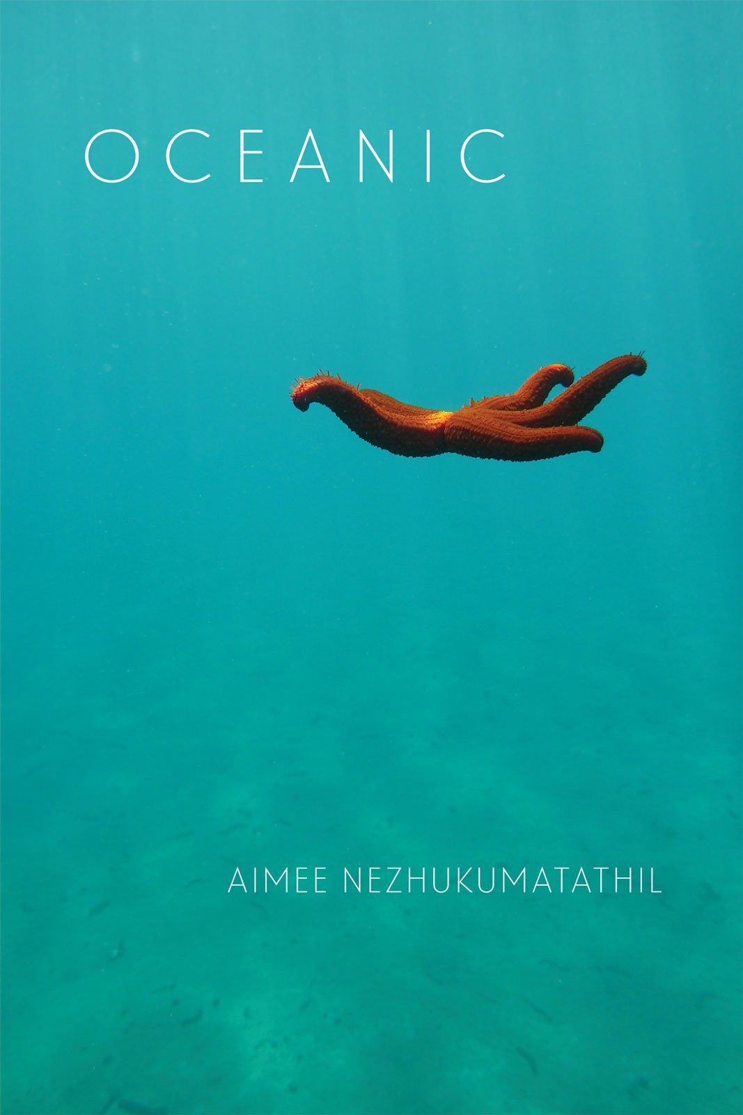 Image result for oceanic aimee nezhukumatathil