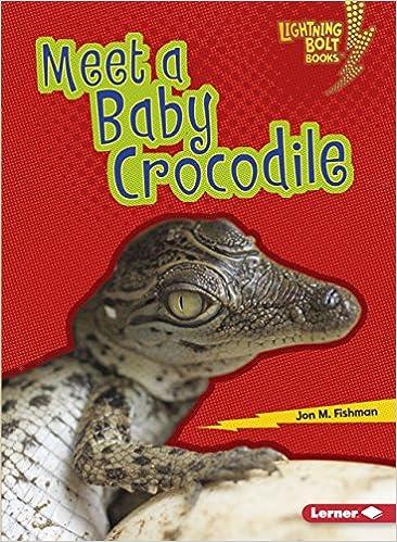 66685e496 Meet a Baby Crocodile (Lightning Bolt Books  Baby Australian Animals)  Jon  M. Fishman  9781512455878  Amazon.com  Books