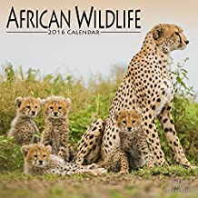 African Wildlife Calendar - 2016 Wall calendars - Animal Calendar - Monthly Wall Calendar by Avonside