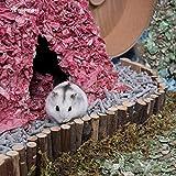 "Niteangel Suspension Bridge for Hamsters, Small Pet Ladder, 21.8"" x"