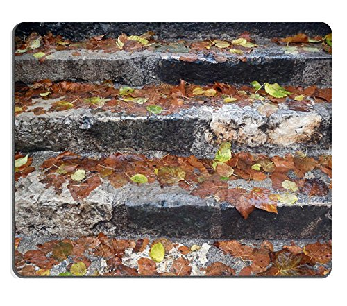 Luxlady Mouse Pad Natural Rubber Mousepad IMAGE ID 21073438 Fall leaves on the wet steps - Wet Location Step