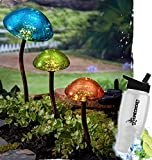 HomeCricket Gift Included- Decorative Outdoor Solar Powered Mushroom Garden Lights Set of 3 Stakes Blue, Green, Orange + FREE Bonus Water Bottle by Home Cricket
