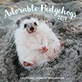 Adorable Hedgehogs Mini 2018: 16 Month Calendar Includes September 2017 Through December 2018