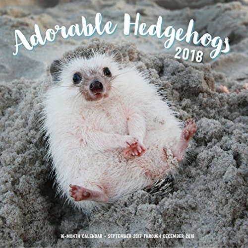 Adorable Hedgehogs Mini 2018: 16 Month Calendar Includes September 2017 Through December 2018 cover