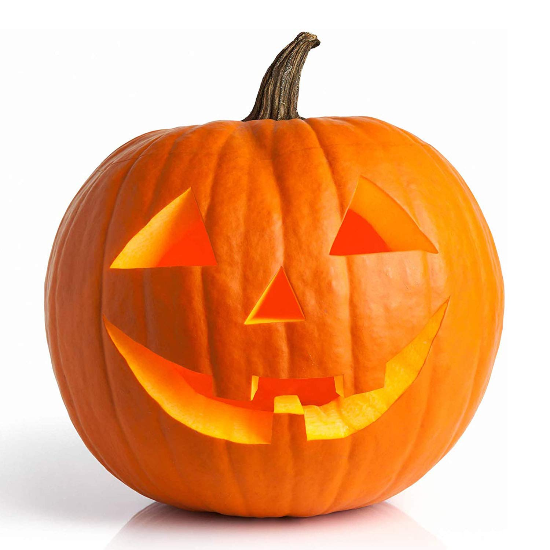 UtopiaSeeds Jack O' Lantern Pumpkin Seeds