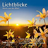 Lichtblicke 2018 - Broschürenkalender - Wandkalender - mit herausnehmbarem Poster und Bibelzitaten - Format 30 x 30 cm: Worte aus der Bibel