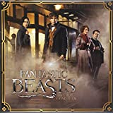 Trends International 2017 Wall Calendar, September 2016 - December 2017, 11.5' x 11.5', Fantastic Beasts and Where to Find Them