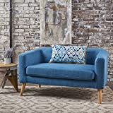 Bron Yr AUR Button Back Mid Century Fabric Modern Loveseat (Muted Blue)