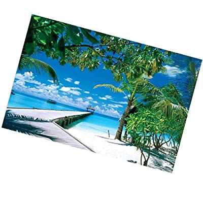 Jigsaw Puzzles 1000 Pieces for Adults, Hawaiian Beach Palm Tree Bridge Puzzles Puzzle Play Puzzle Play Brain Teasers Puzzles for Teens: Toys & Games