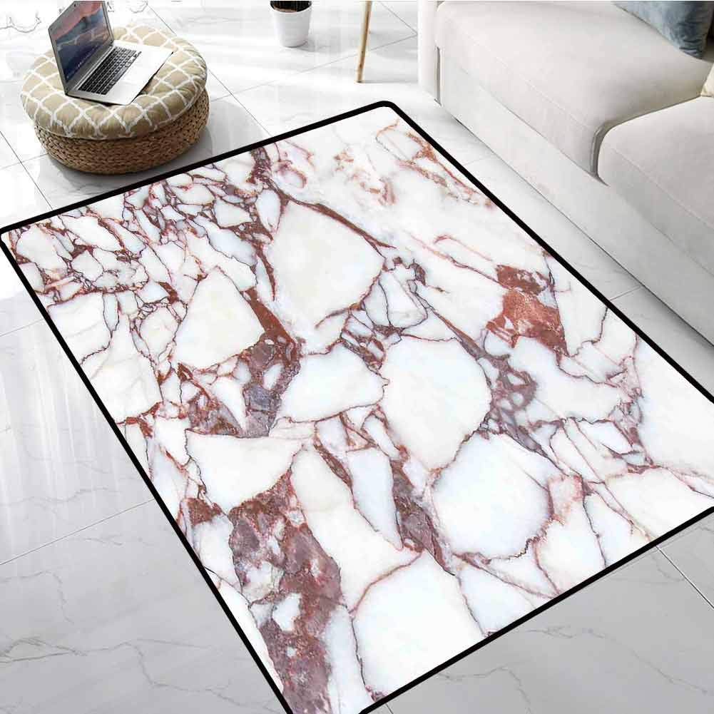 Marble All Weather Mats Dolomite Rocks Pattern with Characteristic Swirls and Cracked Lines Abstract Art Office Chair Floor Mat Foot Pad 24 X 36 Inch