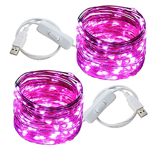 Ruichen(TM Fairy Lights USB Plug Power 33Ft 100 LED Copper Wire Starry String Lights with ON/Off Switch for Bedroom Indoor Outdoor Decorative(Purple,2 Pack)