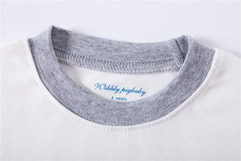 Little Boys Pyjamas Dinosaur Christmas Nightwear Sleepwear Long Sleeve Pjs Set for Kids Toddler 1-2 Years 2T