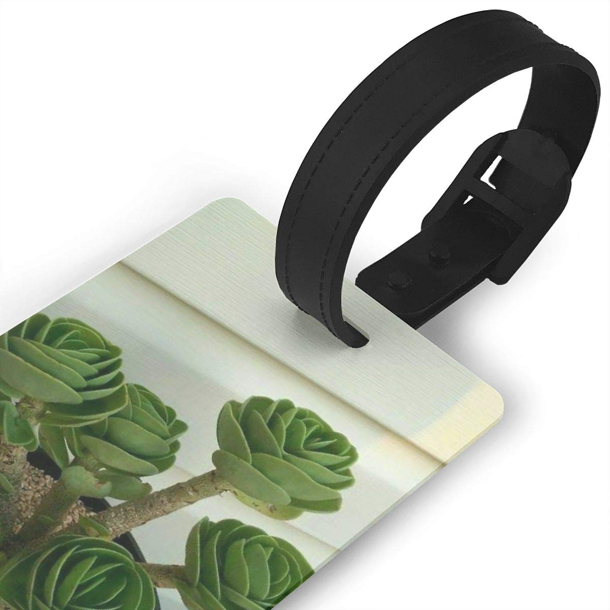2 Pack Luggage Tags Bonsai Cruise Luggage Tag For Travel Tags Accessories