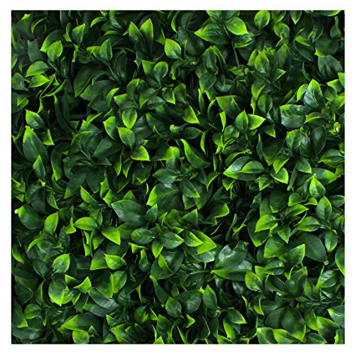 Artificial Hedge - Outdoor Artificial Plant - Great Boxwood and Ivy Substitute - Sound Diffuser Privacy Fence Hedge - Topiary Gardenia Greenery Panels (12, Gardenia)