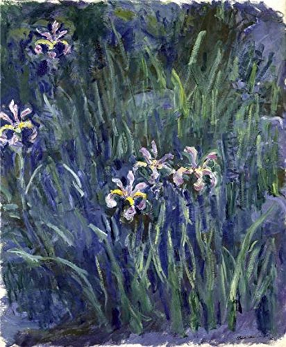 'Iris, 1914-1917 By Claude Monet' Oil Painting, 24x29 Inch / 61x74 Cm ,printed On Perfect Effect Canvas ,this Replica Art DecorativePrints On Canvas Is Perfectly Suitalbe For Bathroom Gallery Art And Home Artwork And Gifts
